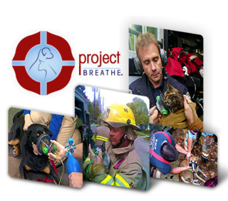 Ifbweb-20130911_giving-back_project-breathe_hero_pics