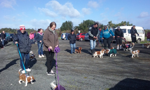 Jan's photo. Walk start